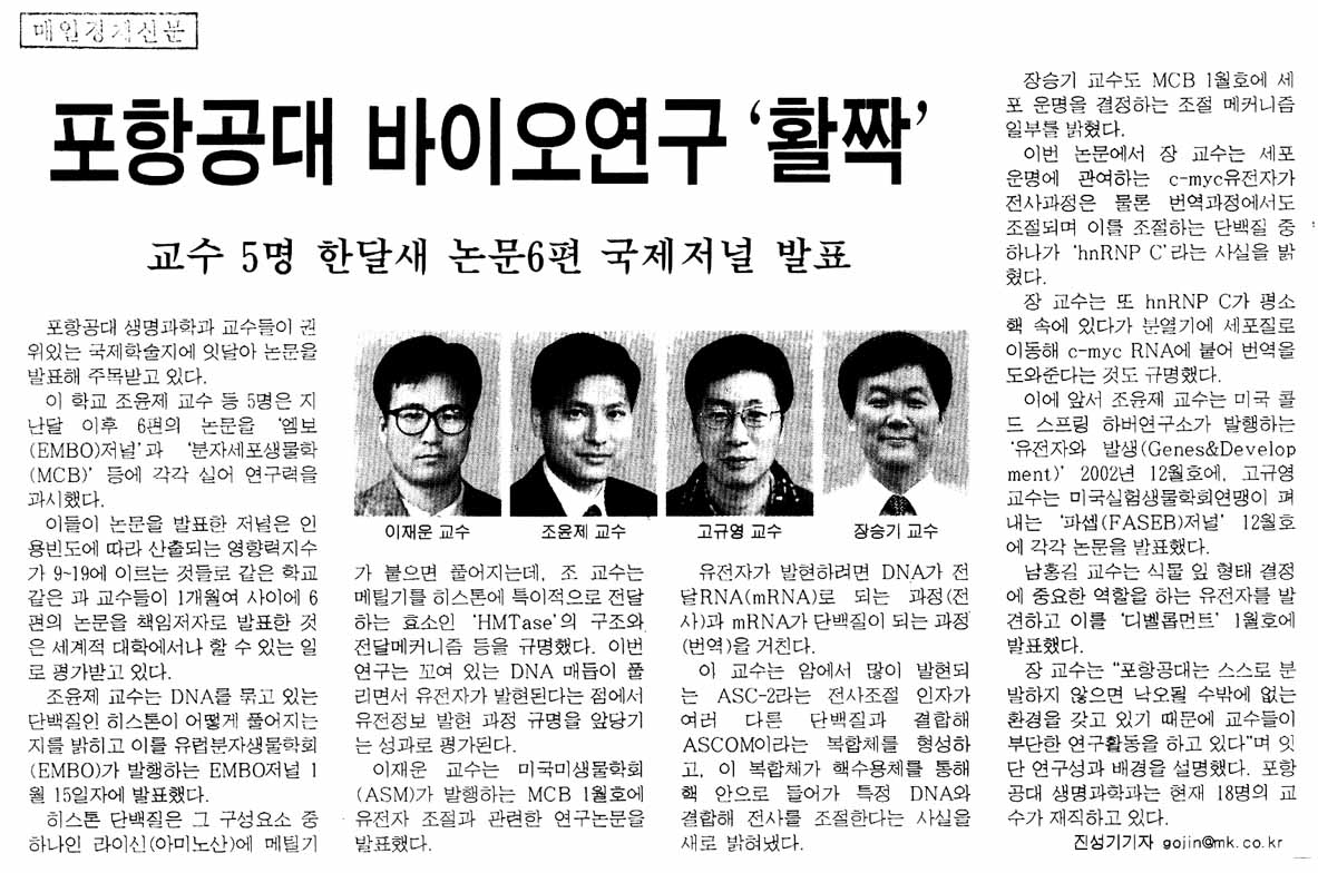 매일경제신문 기사