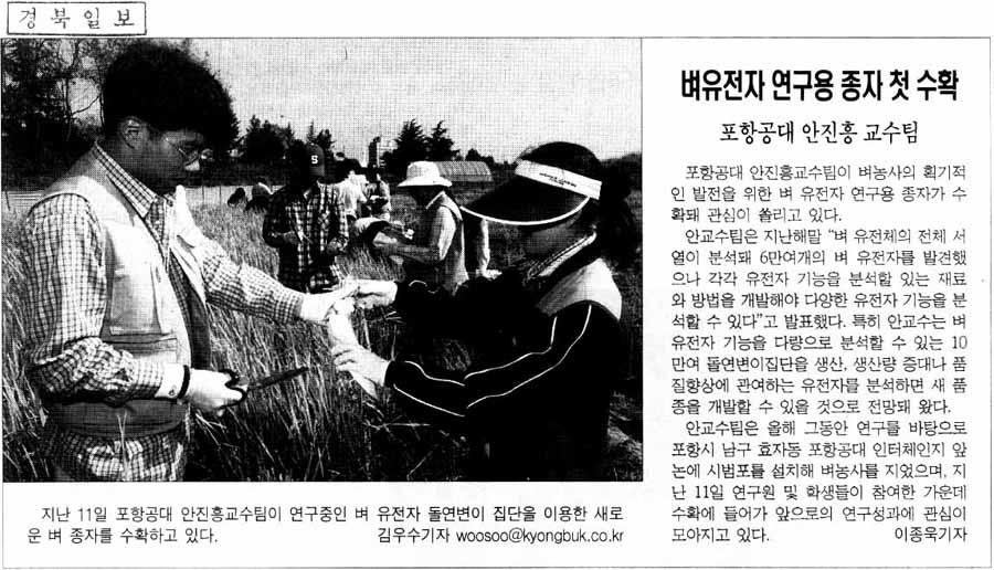 안진흥교수 기사
