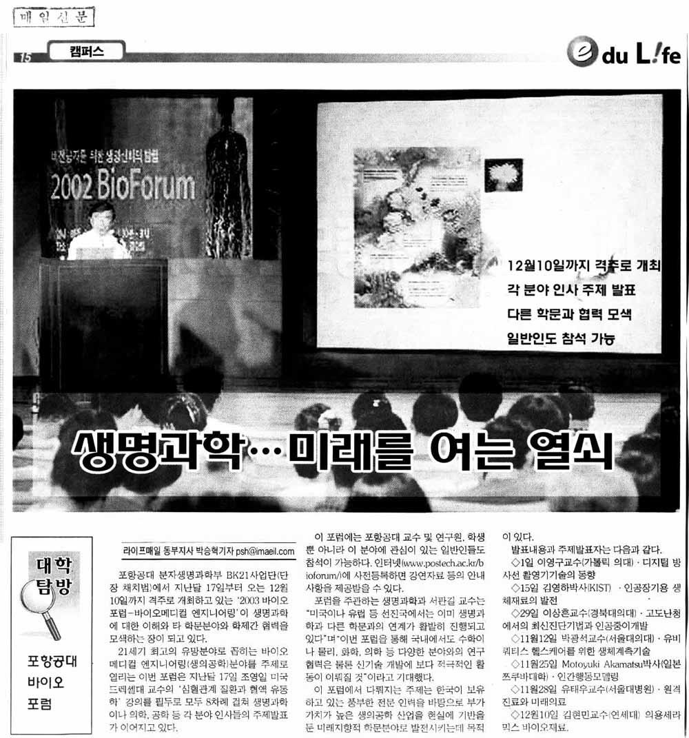 매일신문 기사